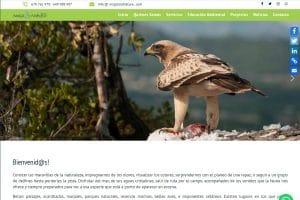 Diseño web Posicionamiento SEO Turismo Activo Dénia Calp Jávea