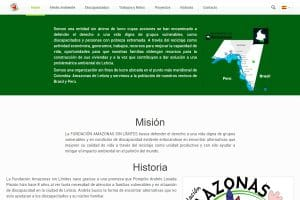 Diseno Web Posicionamiento SEO ONG Responsabilidad Social MarinaAlta